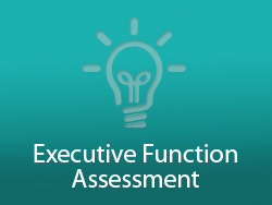 executive function assessment MGLS:2017